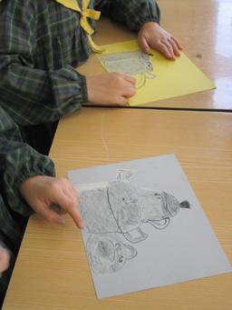 desenho à vista