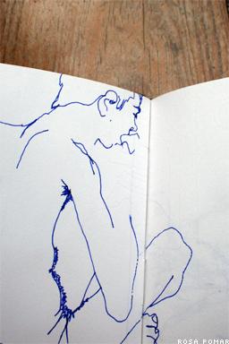diário gráfico